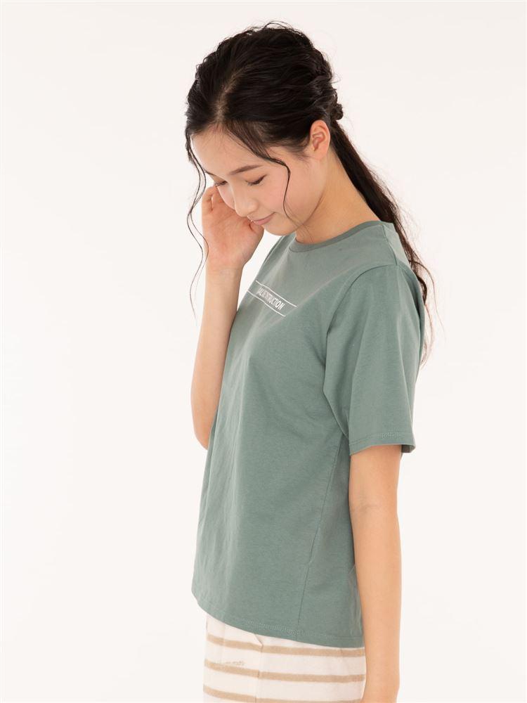 ラインロゴ綿天竺Tシャツ