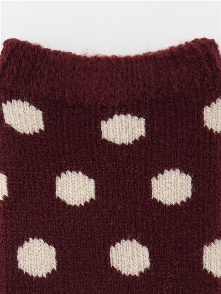 まるで毛布!のような暖かさ裏起毛水玉ソックス21cm丈
