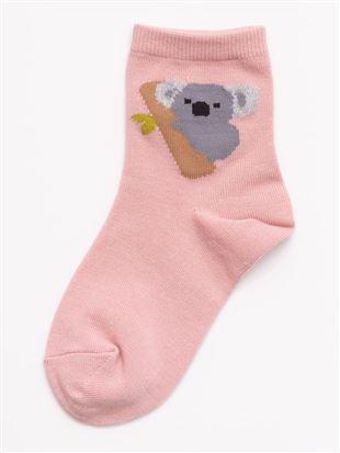 [キッズ]ちょうどいい靴下コアラ柄温調ソックス|
