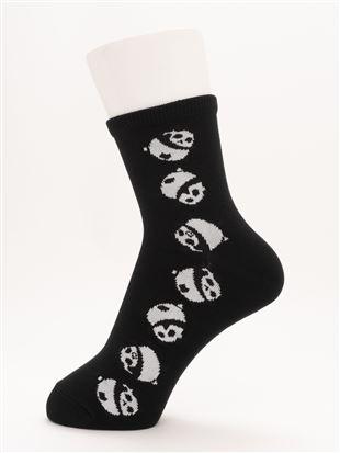[ちょうどいい靴下]ころころパンダ温調ソックス13cm丈 