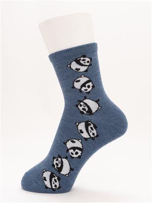 [ちょうどいい靴下]ころころパンダ温調ソックス13cm丈|