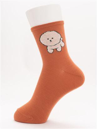 [ちょうどいい靴下]もふもふビションフリーゼ柄温調ソックス14cm丈 